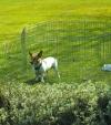 Savic / Савик  Вольер для собак DOG PARK (№1, №3)