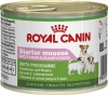 Royal Canin мусс для щенков до 2 месяцев, беременных и кормящих сук, Starter Mousse